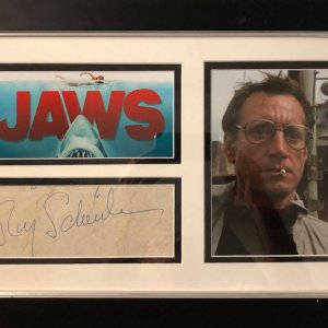 Roy Richard Scheider (November 10, 1932 – February 10, 2008) was an American actor and amateur boxer